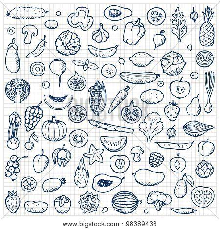 Vegetables and fruits Set hand drawn doodle elements