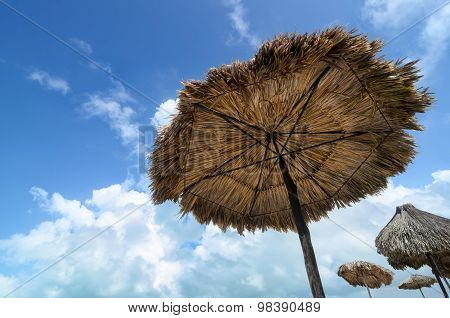 Sunshade Umbrellas Made Of Palm Trees And Blue Cloudy Sky - Bottom-up View