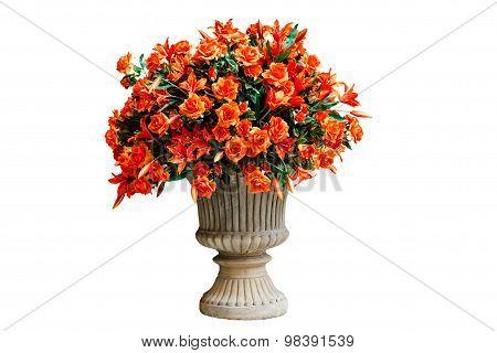 Orange Flowers In A Flowerpot