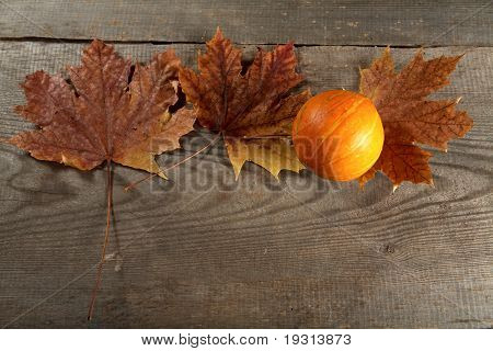 Dry Leaves Of  Maple And Pumpkin On A Table