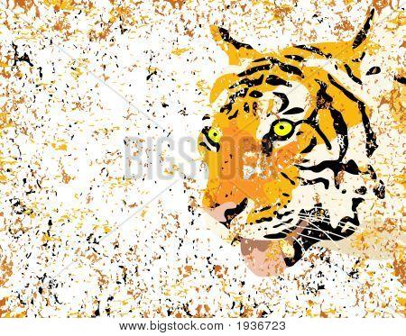Grunge Tiger