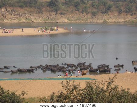 River Banks In India