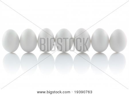 Seven isolated eggs