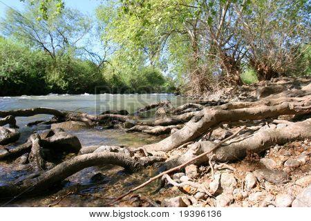 The mountain river Jordan