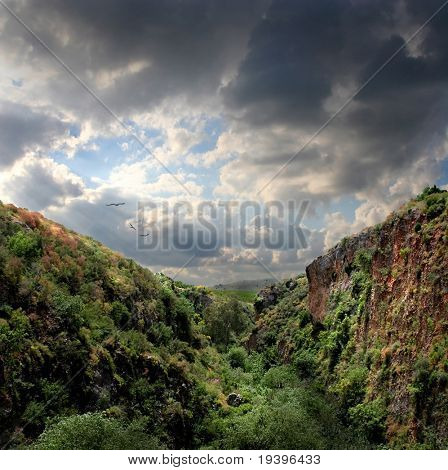 Mountain landscape with eagles
