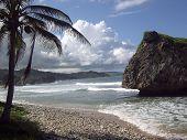Tropical Get Away poster