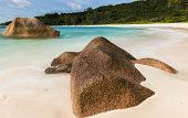Beautifully shaped granite boulders in the turquoise sea (daytime long exposure technique) at Anse C poster