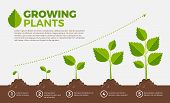 growing poster