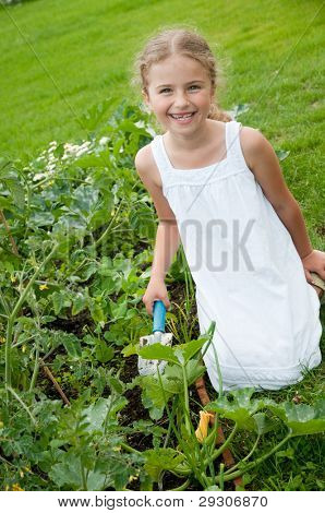Gardening - little gardener is working in the vegetable garden