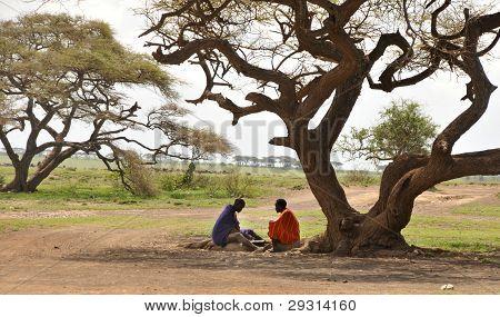OLDUVAI GORGE, TANZANIA, DECEMBER 23, 2011, TWO MAASAI MEN PLAYING A BOARD GAME UNDER A TREE