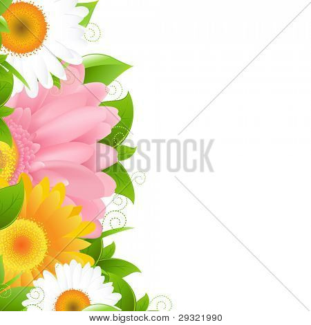 Flower Gerbers And Leaves, Vector Illustration