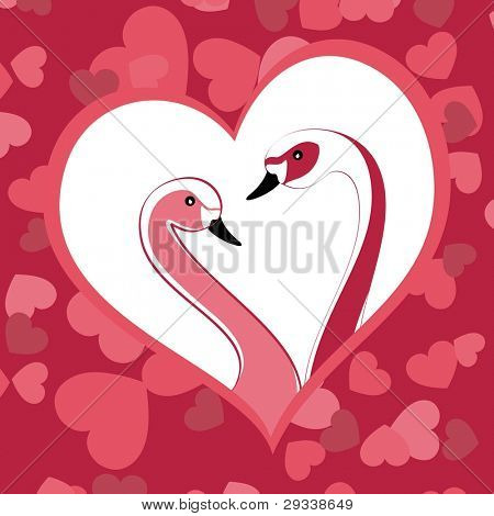 Two graceful swans close up in love heart shape frame with seamless pink heart shape background for Valentines Day and other occasions.