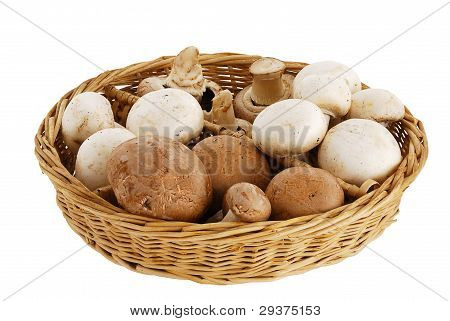 Mushroom Mix In Straw Basket
