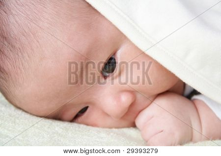 newborn baby covered by blanket.