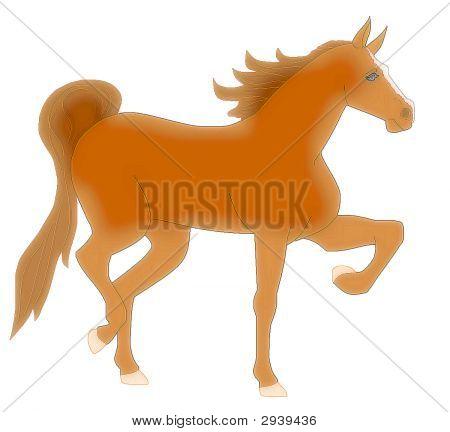 Prancing Saddle Horse On White
