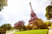 View On Eifel Tower Over Lawn Of Champs De Mars poster