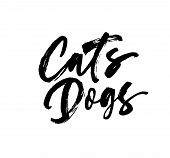 Cats, Dogs Handwritten Black Calligraphy. Ink Brush Pets Typography. Grunge Brushstroke Phrase Isola poster