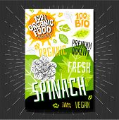 Food Labels Stickers Set Colorful Sketch Style Fruits, Spices Vegetables Package Design. Spinach. Ve poster