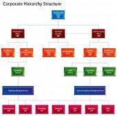 An image of a corporate hierarchy structure chart.