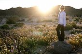 Woman Standing On A Rock In A Wildflower Field At Dusk In Joshua Tree National Park California. Sunf poster