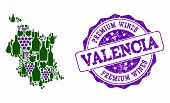 Vector Collage Of Grape Wine Map Of Valencia Province And Purple Grunge Seal For Premium Wines Award poster