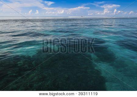 Recife de Tubbataha Seascape Palawan nas Filipinas