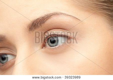 Macro image of human eye