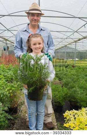 Little girl holding potted plant with grandfather in the greenhouse
