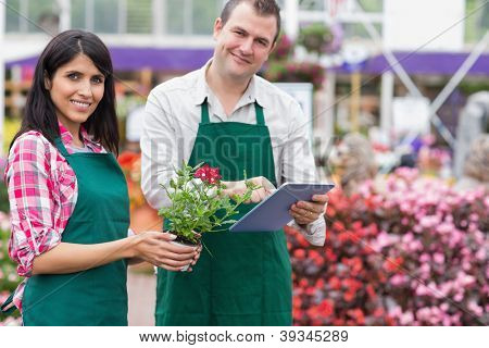 Two employees doing inventory in garden centre wth tablet pc