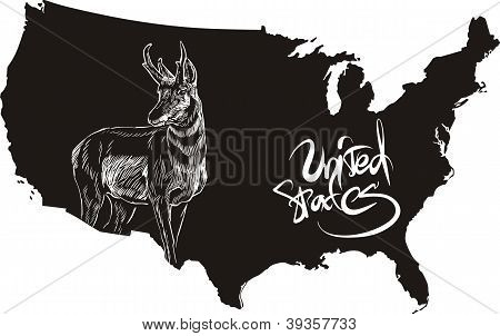 Pronghorn And U.s. Outline Map