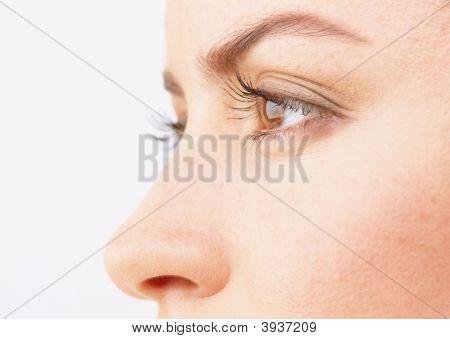 Close-up dos olhos de em uma bela Woman\\\