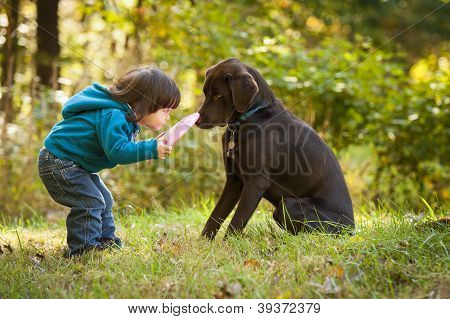 Young Child Playing Fetch With Dog