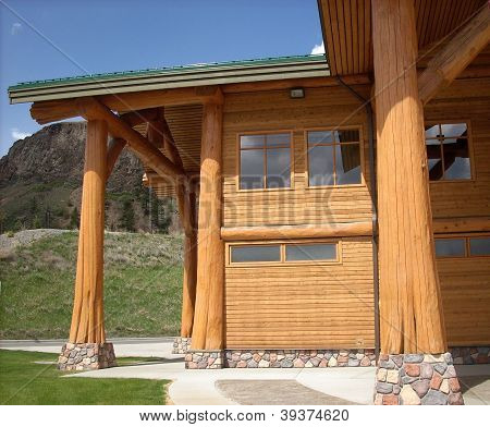 Tree trunk structure modern log building