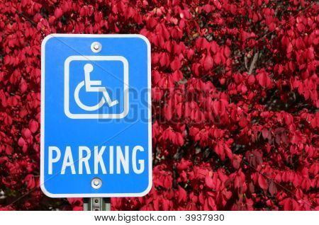 Handicap Parking Sign