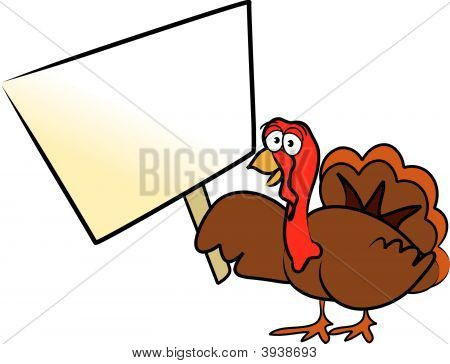 Vector Cartoon Thanksgiving Turkey Holiday Design / Drawing