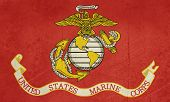 picture of united states marine corps  - Grunge illustration of the United States Marine Corps flag - JPG