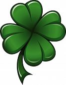 picture of four leaf clover  - Four leafs clover symbol  - JPG