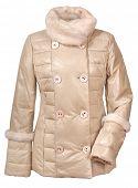 stock photo of jupe  - women jacket isolated on white - JPG