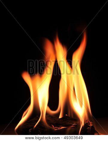 warm fire on black