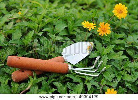Garden tool in lawn