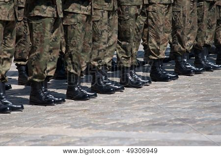 Soldier In Formation