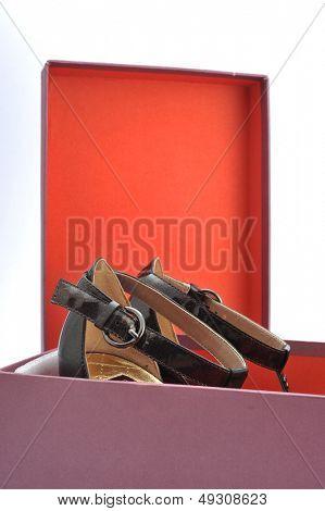 Opens shoe box