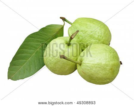 three guava