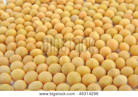 Close-up of soy beans