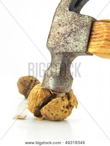 Noz rachado pelo martelo. Isolado sobre o branco