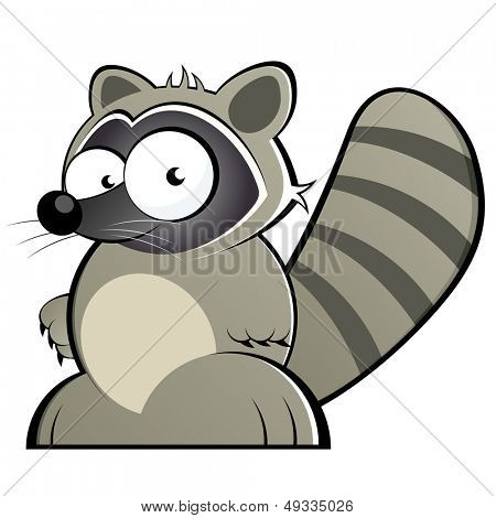 funny cartoon raccoon