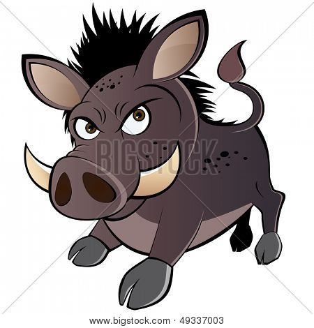 funny boar cartoon