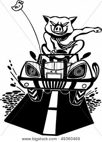 Bully pig. Vector illustration.