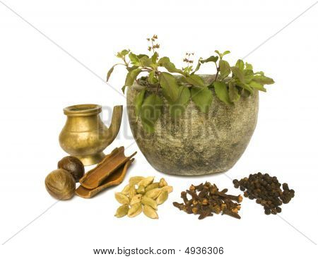 Ayurveda Natural Health 2