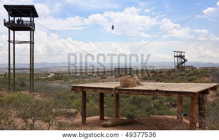 A Zip Line At Out Of Africa Wildlife Park